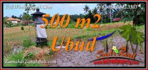Exotic PROPERTY UBUD 500 m2 LAND for SALE TJUB812